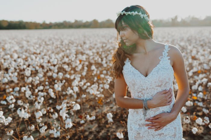 Cotton Farm Wedding Cover