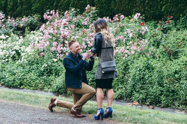 Portland Rose Garden Proposal - Sean Carr Photography   Portland ...