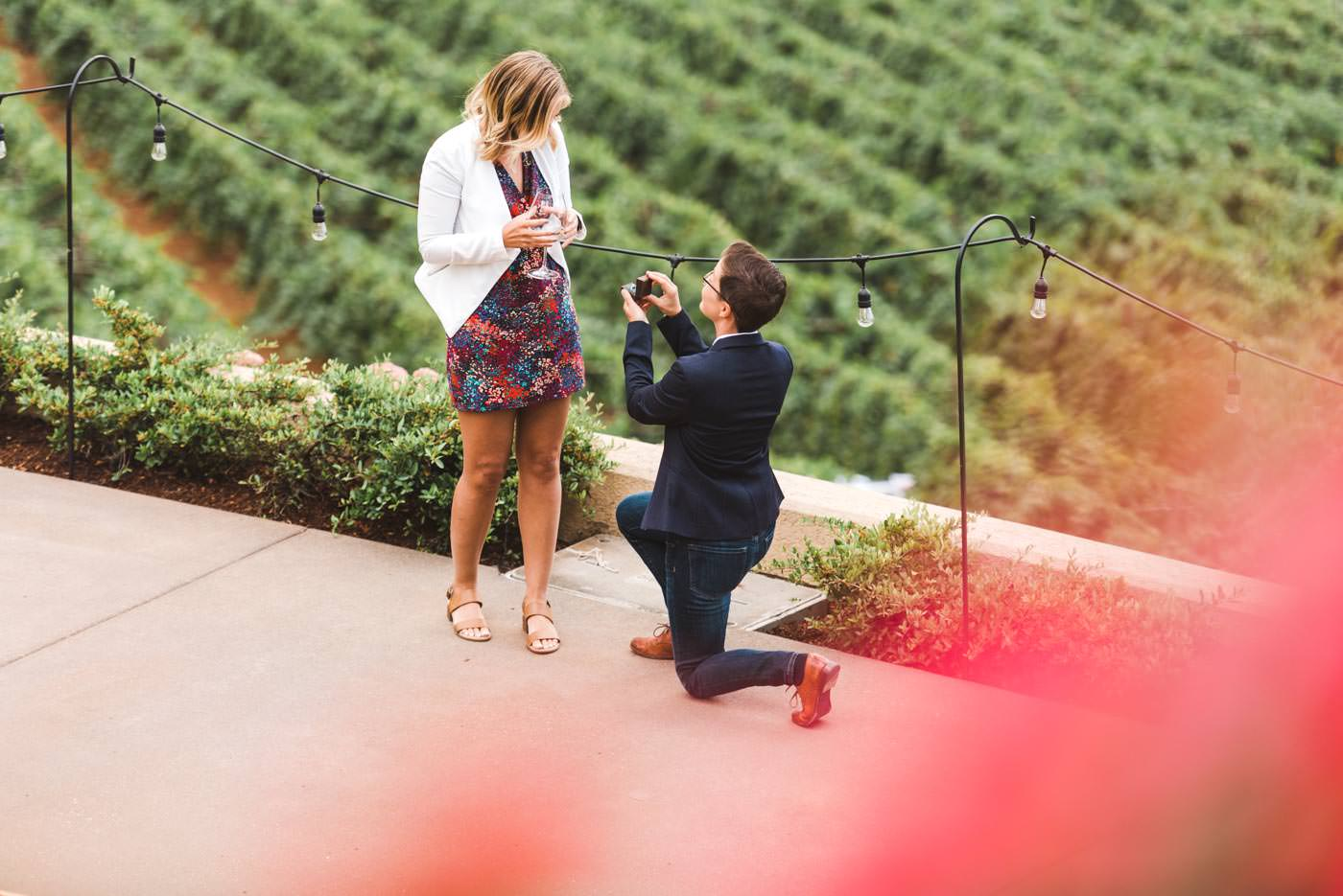 same sex Portland winery proposal at Willamette Valley vineyards