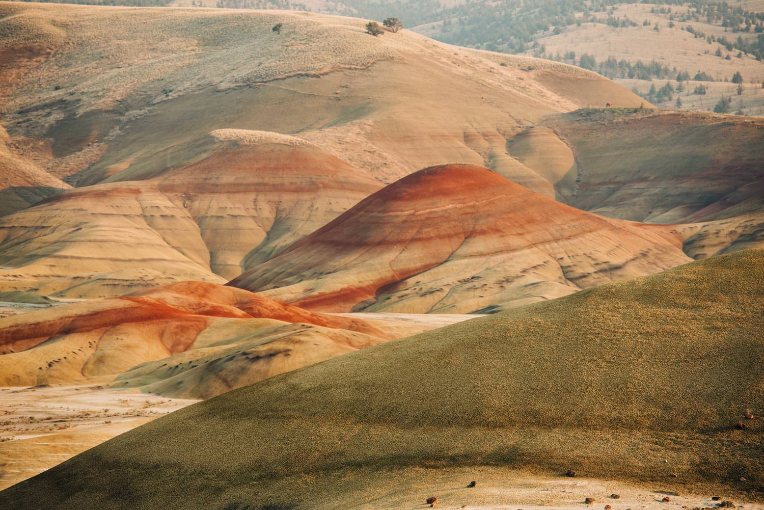 Bend and Eastern Oregon Elopement Locations Painted Hills